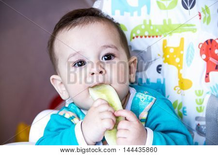 baby eating vegetables. in a high chair. teething the cucumber the concept food feeding . Newborn home. healthy . The first child eat nutritious snacks.