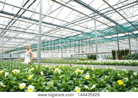 A young gardener woman having a break in the greenhouse