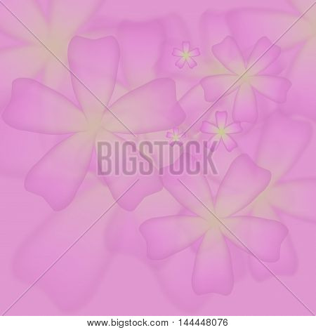 pink floral  blurred background with geometric shapes and lines