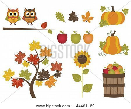 Vector fall set with owls, tree, apples, pumpkin and sunflower