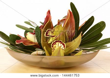 An arrangement of Australian orchids on a table.