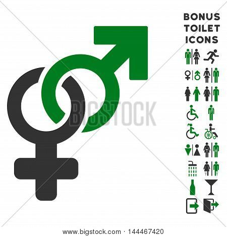 Heterosexual Symbol icon and bonus man and woman WC symbols. Vector illustration style is flat iconic bicolor symbols, green and gray colors, white background.