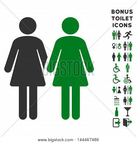 Lesbi Couple icon and bonus male and female lavatory symbols. Vector illustration style is flat iconic bicolor symbols, green and gray colors, white background.