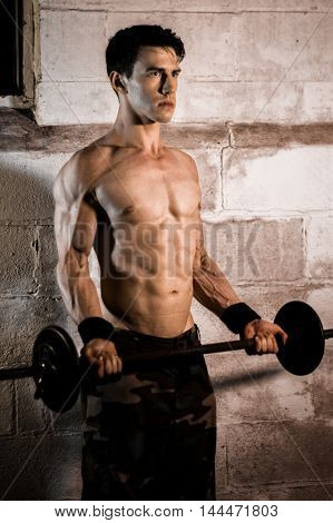 Athletic man performing bicep curl exercise.