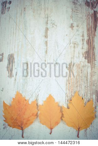 Vintage Photo, Yellow Autumnal Leaves With Copy Space For Text On Wooden Background