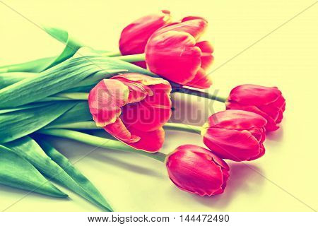 The buds of spring flowers tulips. bouquet