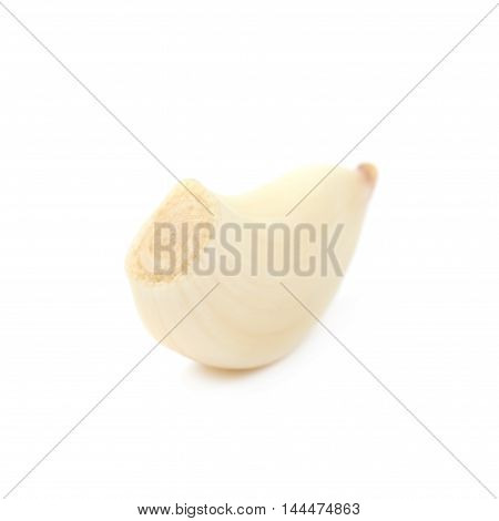 Single garlic clove isolated over the white background