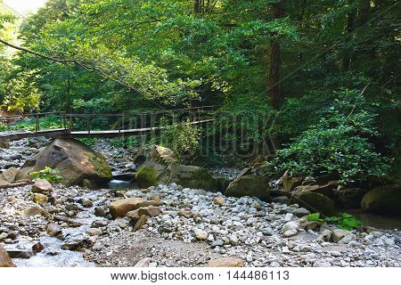 Old wooden bridge over a mountain creek in the forest