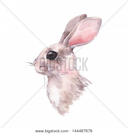 Cute hand drawn rabbit. Watercolor painting. Colorful