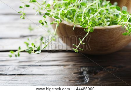 Fresh Green Thyme On The Wooden Table