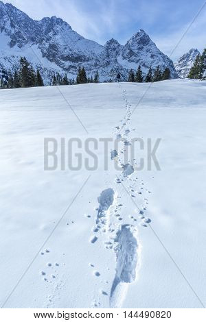 Alpine path of footsteps in the snow - Snowy landscape in the Austrian Alps mountains with details of footprints on the blanket of snow.