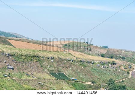 Crop farm on the high mountain near the national park in the northern of Thailand.