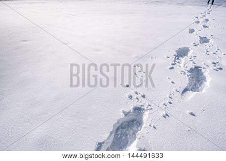 Footsteps on snow - An image with a trail of footprints in a thick layer of snow. Picture captured in the mountains from the town Ehrwald Austria
