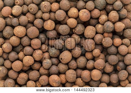 Organic dry False Black Pepper (Embelia Ribes). Macro close up background texture. Top view.