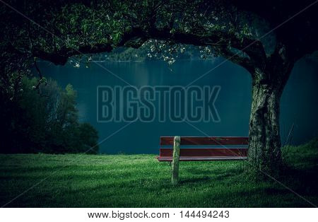 Wooden bench in orchard - Red wooden bench in a blooming orchard with a beautiful view of the lake Walensee in the Swiss Alps. Picture taken near the village Unterterzen Switzerland