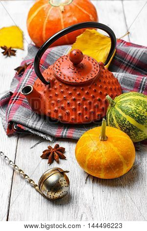 Kettle And Autumn Pumpkin
