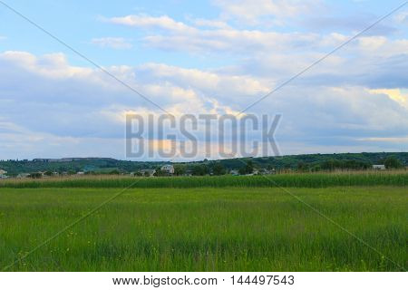 Green meadow and blue sky. Spring landscape