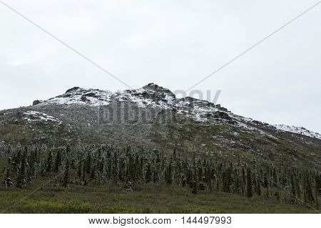 Fresh dusting of snow on the mountains of Alaska's Denali National Park
