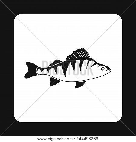 Perch fish icon in simple style isolated on white background. Inhabitants aquatic environment symbol