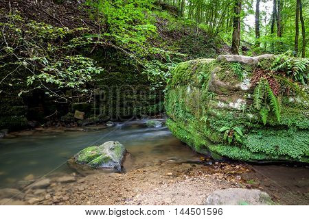 deep in the forest there is river beside a large boulder in Luxembourg's Little Switzerland