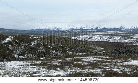 Snow dusts the landscape of Denali National Park
