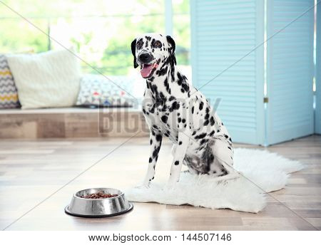 Dalmatian dog with his bowl