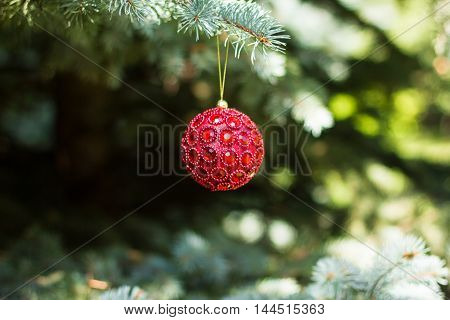 Traditional christmas or new year decorated tree with a red ball