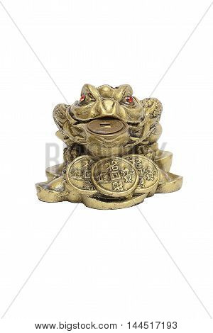 Figurine a toad with the money to bring good luck