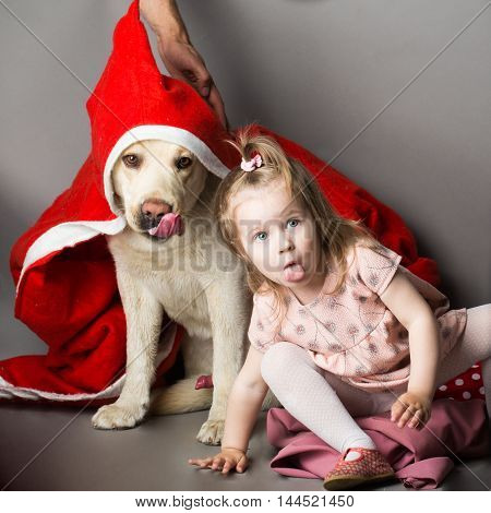Happy little girl with smiling funny face showing tongue near labrador dog pet in santa claus coat in studio on grey background