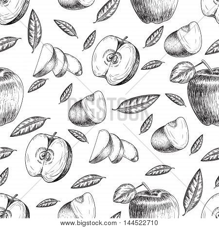 Seamless of hand drawn apple. Vintage sketch style illustration. Organic eco food. Whole , sliced pieces half, leaves and flowers leave sketch. Fruit engraved style illustration.