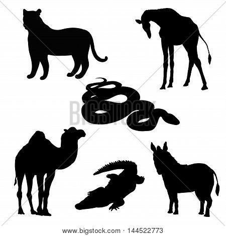 vector illustration giraffe, zebra, crocodile, camel, snake and tiger black silhouette