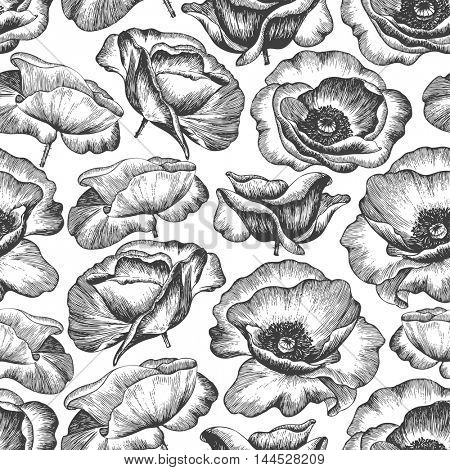 Seamless background with flowers poppies, hand-drawn illustration in vintage style.