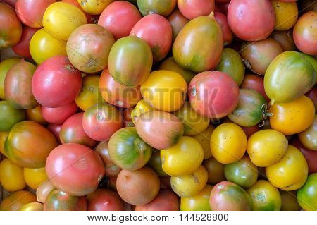 Background of local tomatoes. Different color. Top view