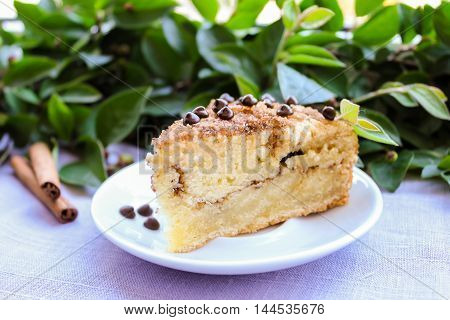 Piece of cinnamon and chocolate chips coffee cake or pie on a dessert plate, selective focus