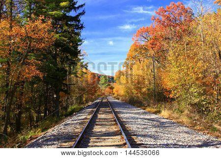 Rail road tracks continuing into autumn  foliage horizon