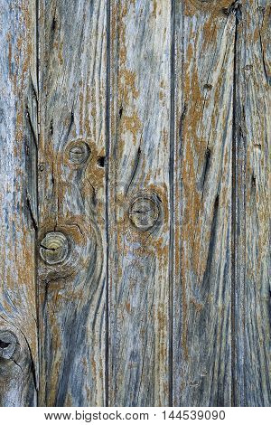 Texture: old shabby wooden surface. Background rustic