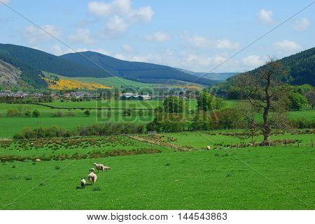 looking eastwards to Innerleithen in Tweed valley