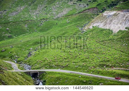 Red car Transfagarasan Road in southern section of Carpathian Mountains in Romania