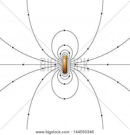 Magnetic field lines of a ring current of finite diameter. The arrows showing the direction of the magnetic field. Illustration over white.
