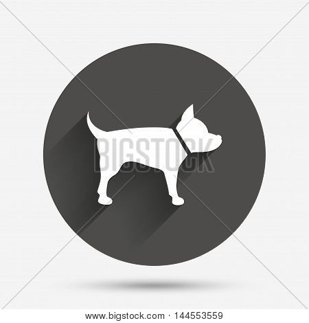 Dog sign icon. Pets symbol. Circle flat button with shadow. Vector