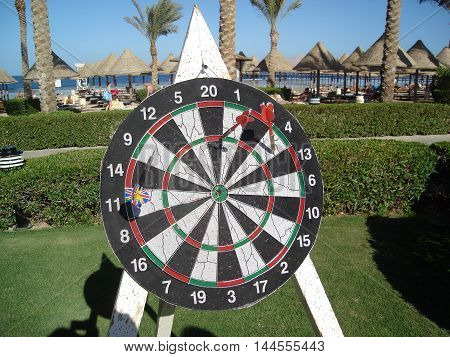 Shield darts on the grass in an exotic resort