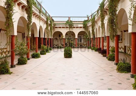 Beautiful patio in Morocco with lot of plants