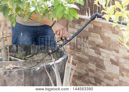 Drip irrigation system, a person with  PVC Pipes as Part of Installation of Underground automatic Sprinkler System for Watering the tree