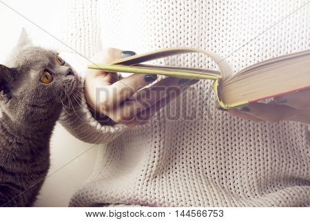 young girl and a cat reading an open book . old book. Back to school. Copy space. Toned image.