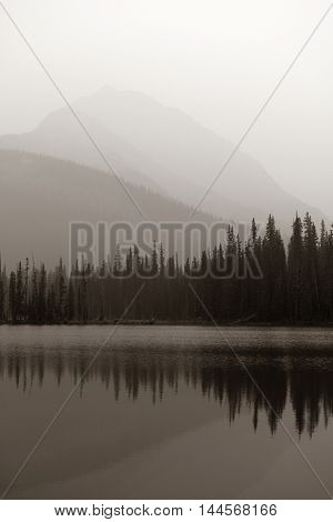 Foggy mountain lake and forest in Banff National Park