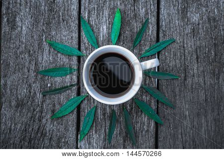 Coffee cup on green leaves background Flat lay. textured