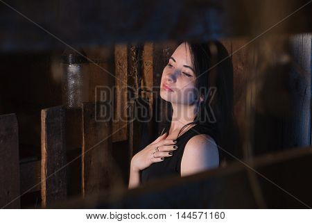 Beautiful Girl In Evening Dress, The Model Poses Against A Wooden Wall