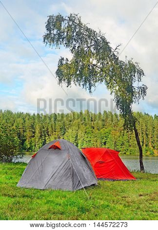 Two tents wet after intermittent rain near tree bending on wind on bank of forest lake as concept of active summer vacation