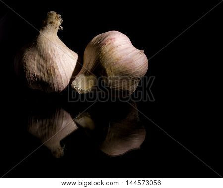 Close up of two Elephant Garlic bulbs on a black background