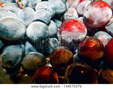Multi-colored bunches of large grapes with condensation